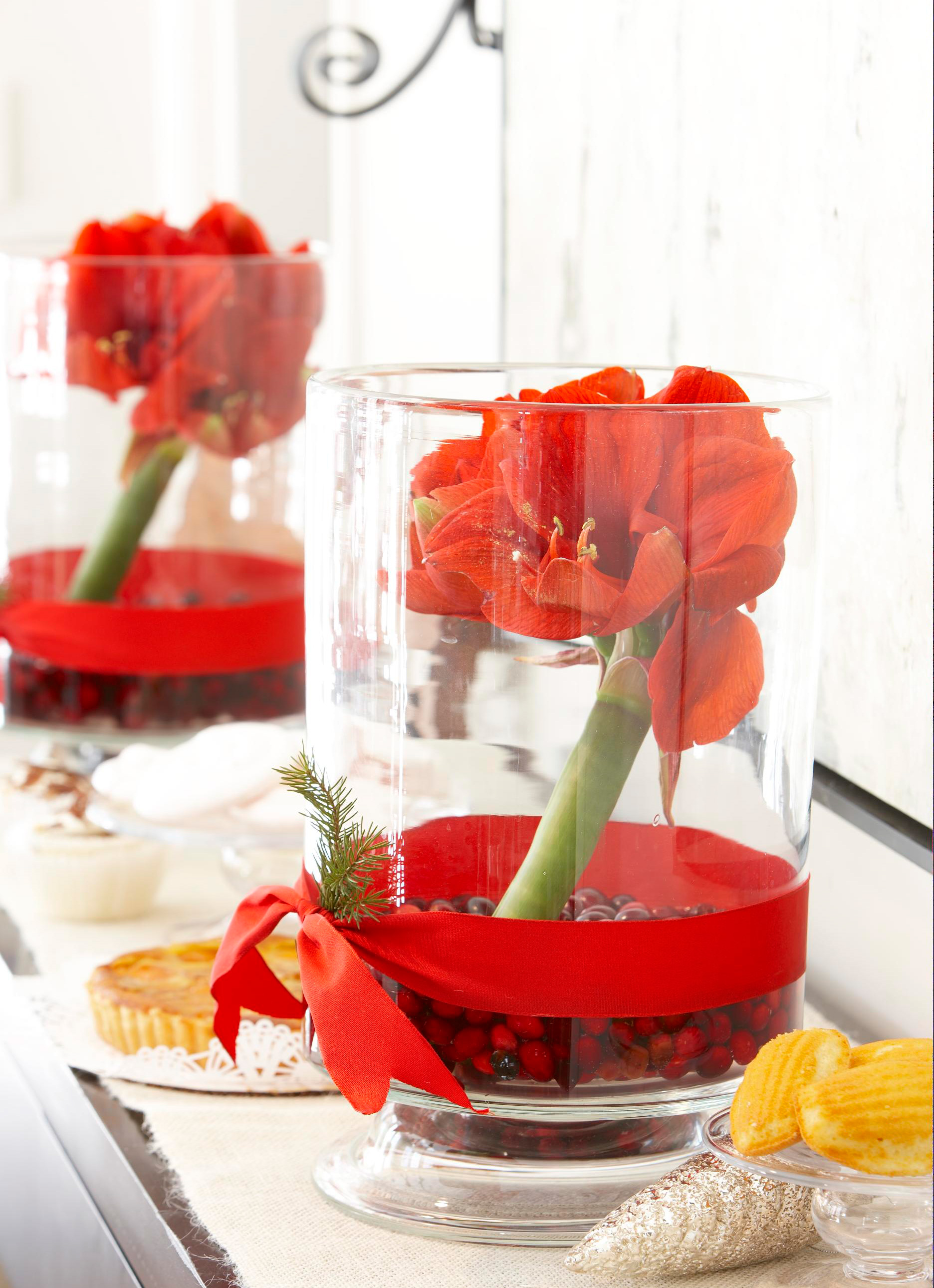 Christmas centerpiece ideas: amaryllis