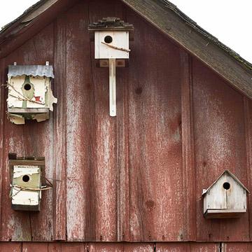 Vintage birdhouse style