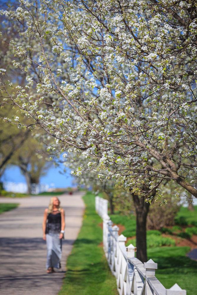 Benton Harbor and St. Joseph, Michigan