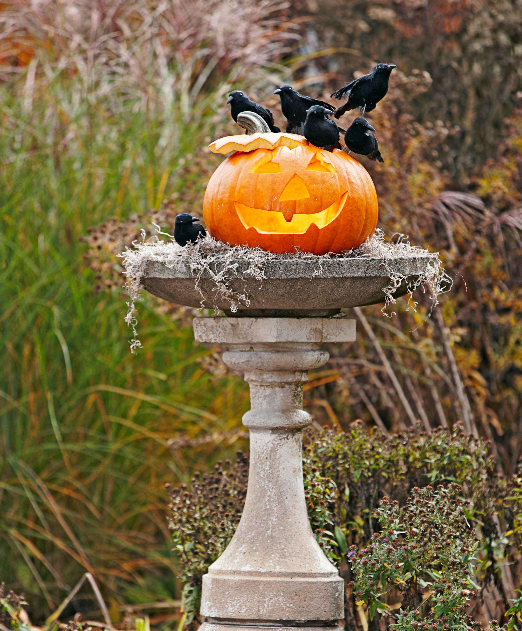 Haute Halloween