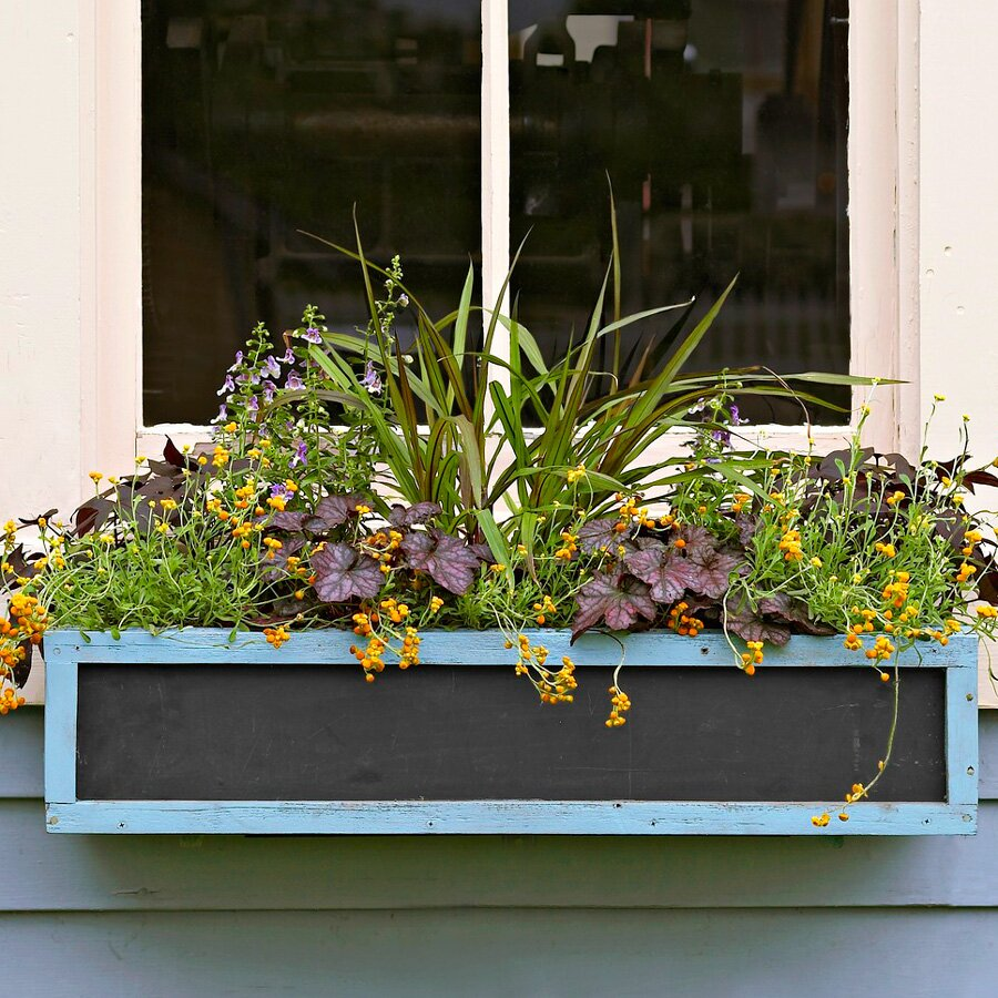Chalkboard window box