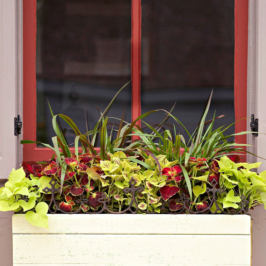 Salvaged iron window box