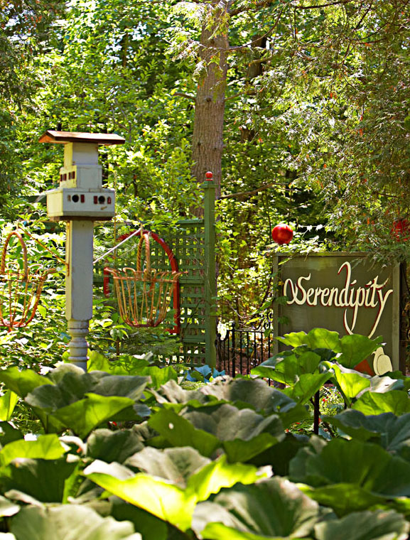 Vintage signs and birdhouses