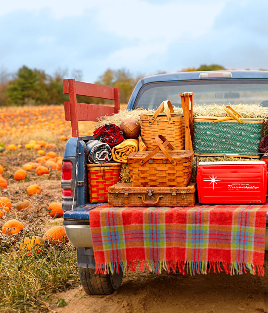 Fall picnic tips