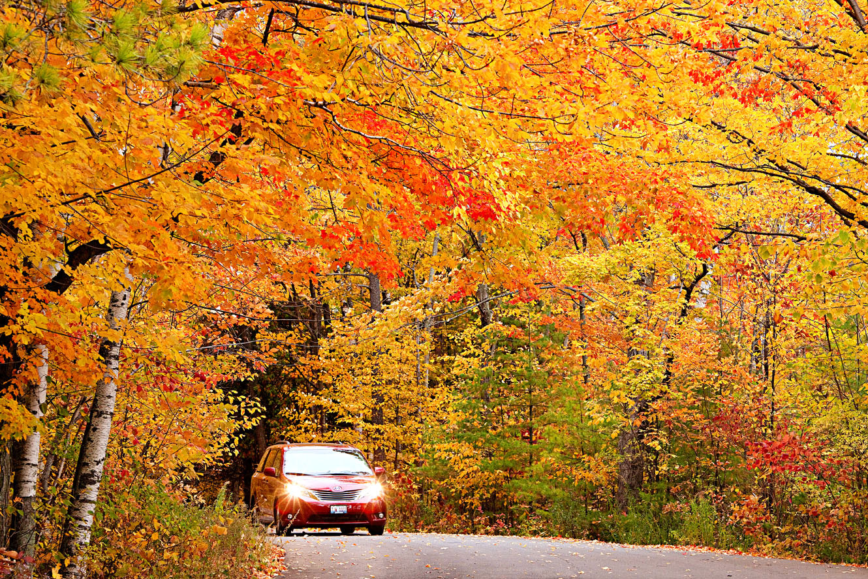 Fall foliage near Sturgeon Bay.
