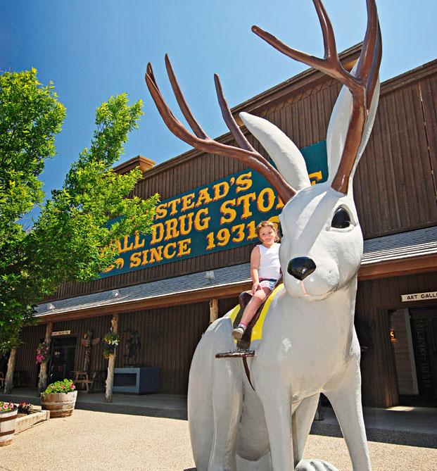 I-90:  Wall Drug Store