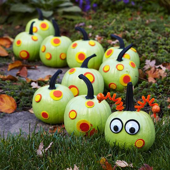 Caterpillar pumpkins