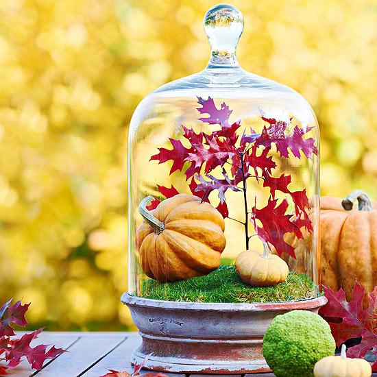 Fall in a jar