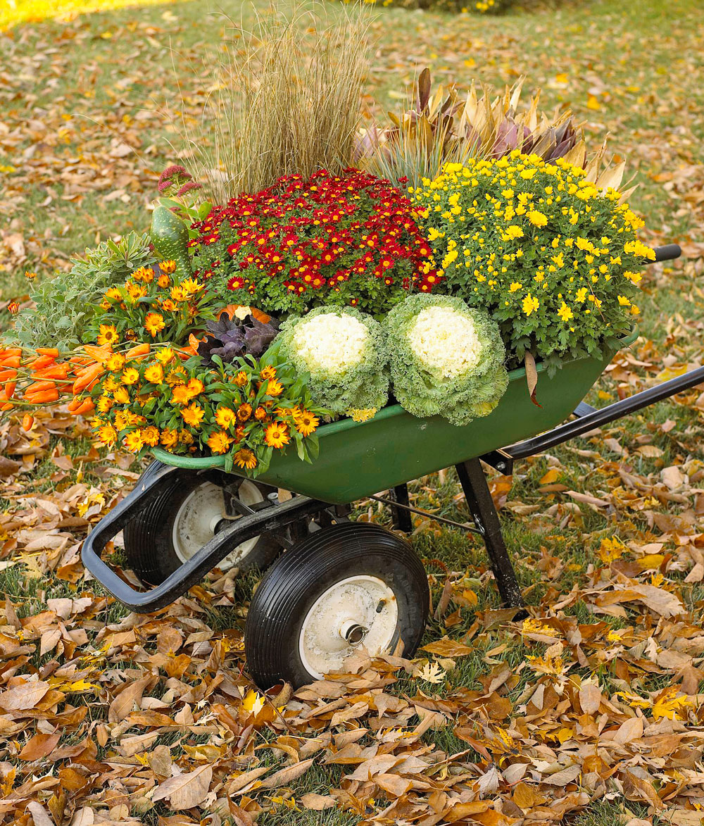 Bountiful wheelbarrow