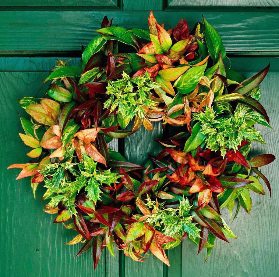 Any-Season Wreath