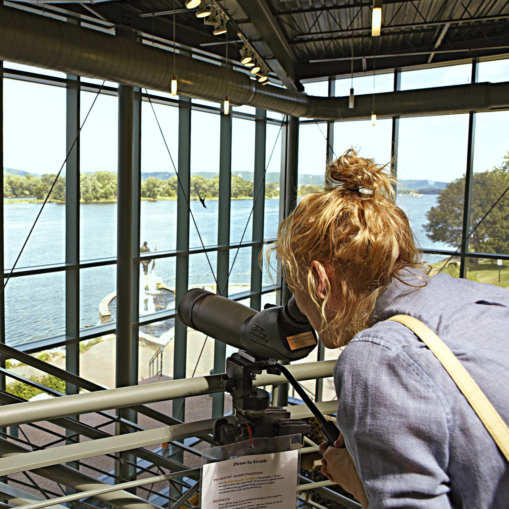 Wabasha, Minnesota: National Eagle Center