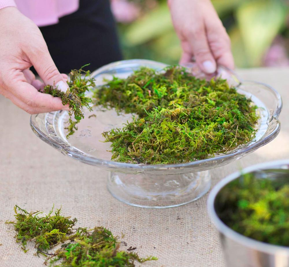 Step 2: Add moss