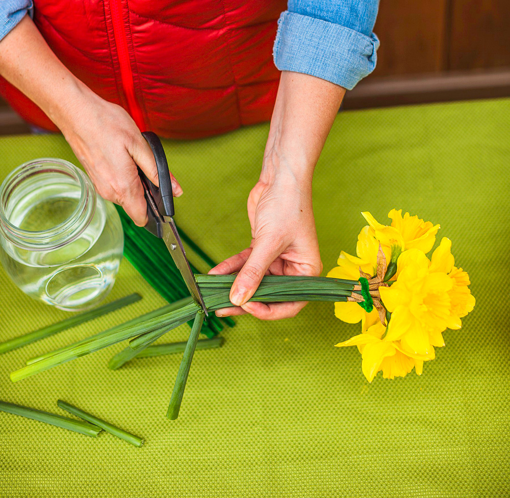 Step 5: cut stems