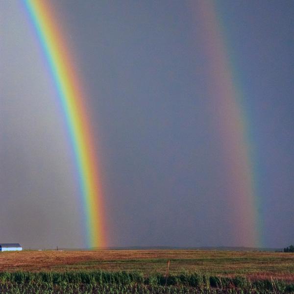 Rainbow-NEW