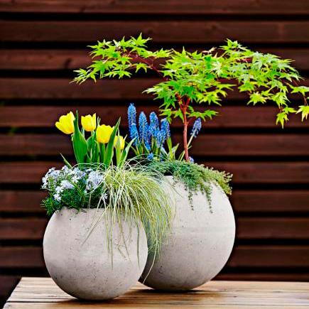 DIY Concrete Globe Planter