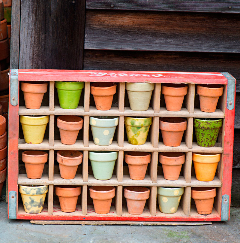 Pots in a box