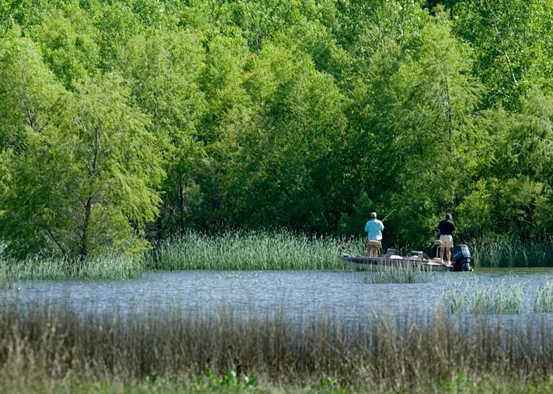 Swanson Reservoir