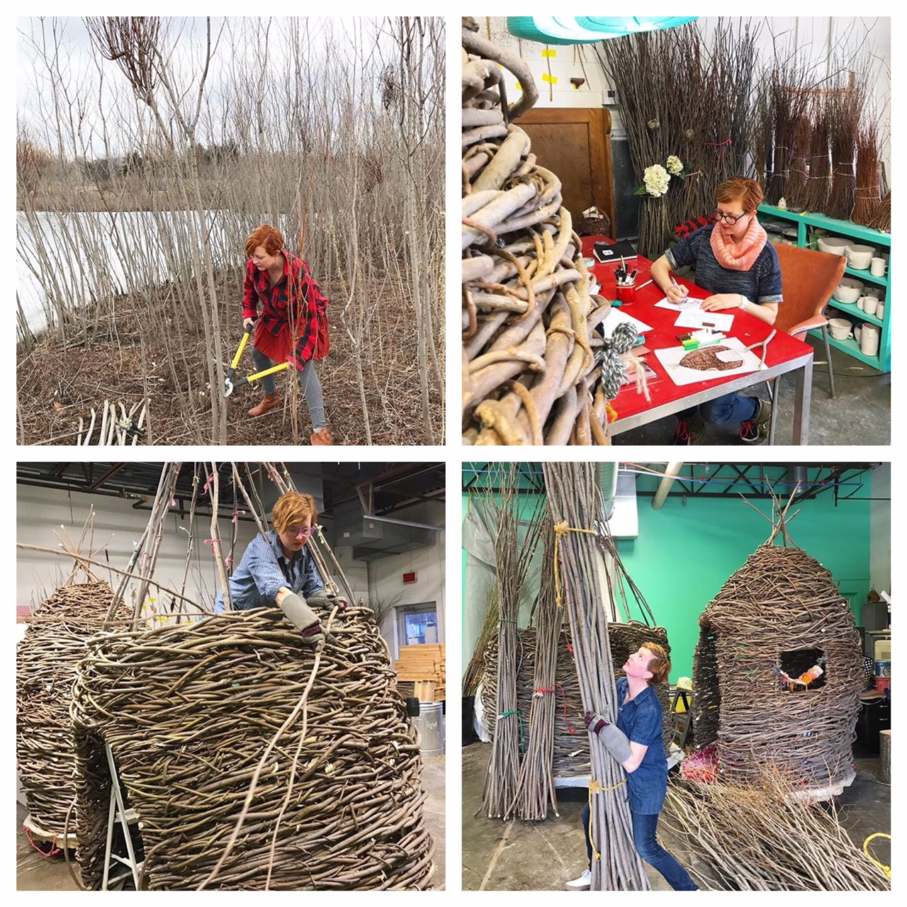 Harvesting, designing and weaving Thickets