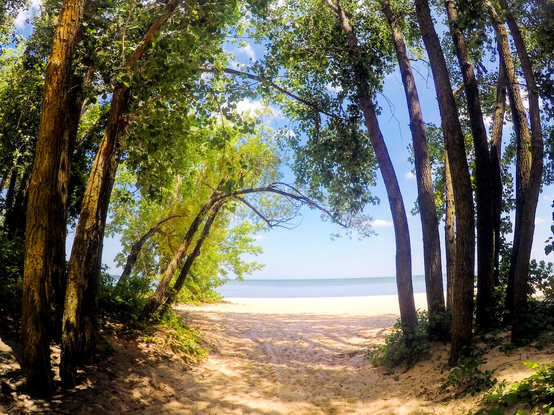 Bay City beach