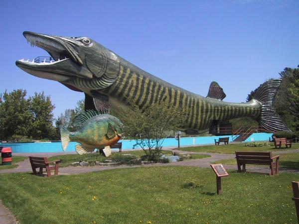 World's Largest Fiberglass Fish