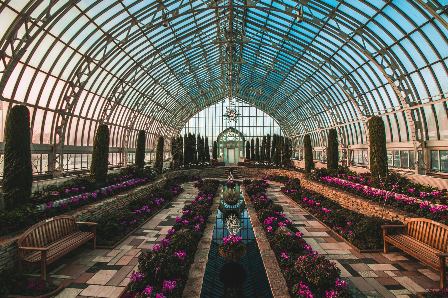Super-Bold-Winter-Flower-Show-at-Como-Zoo-and-Conservatory