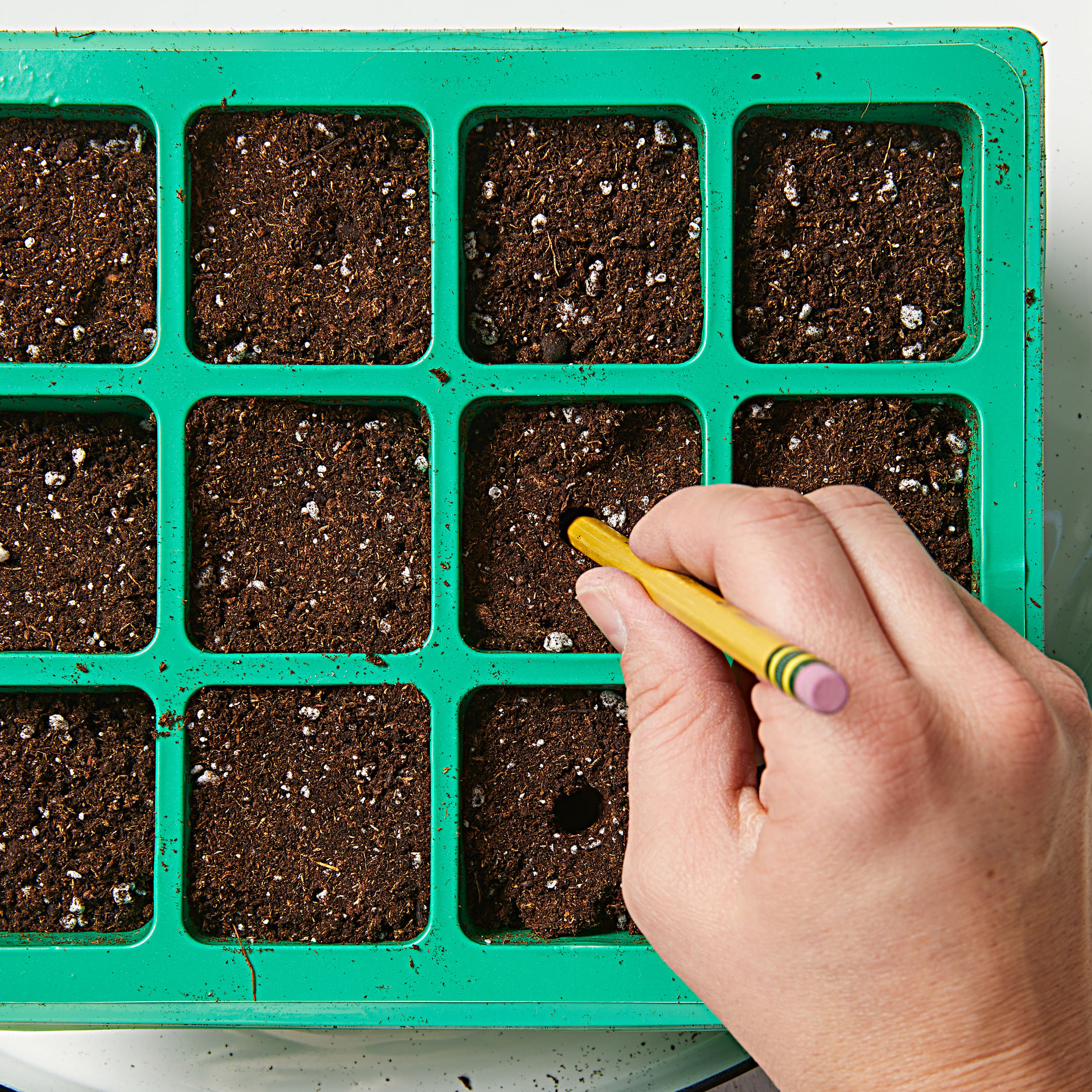 How to start seeds-Step 2
