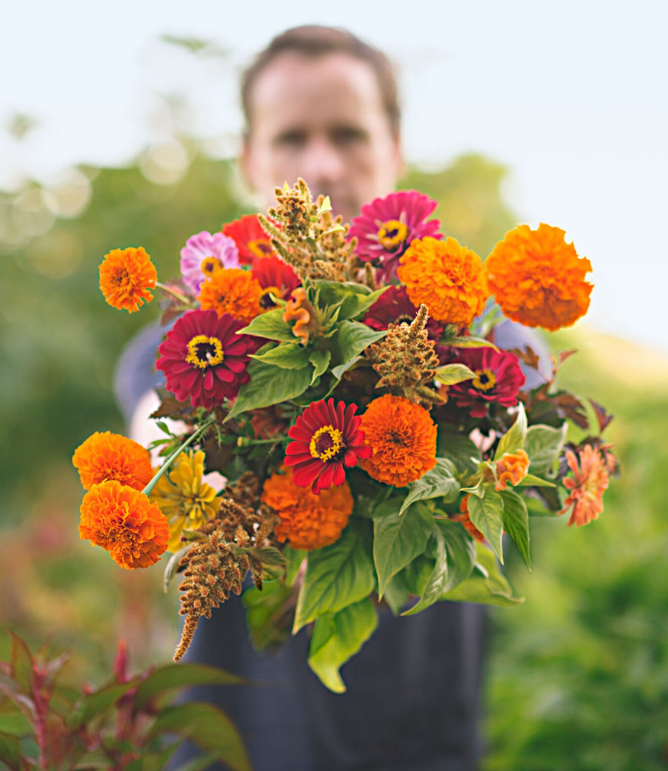 Easy Annual Flowers Deliver Summer Long Color Midwest Living