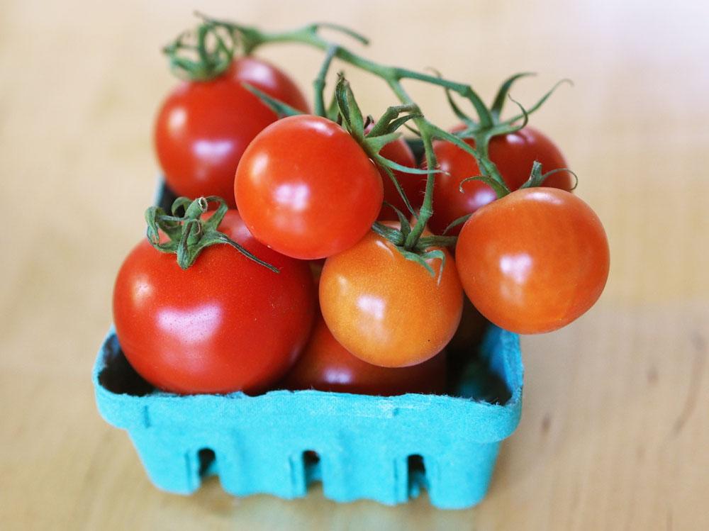 growing-tasty-tomatoes-basket
