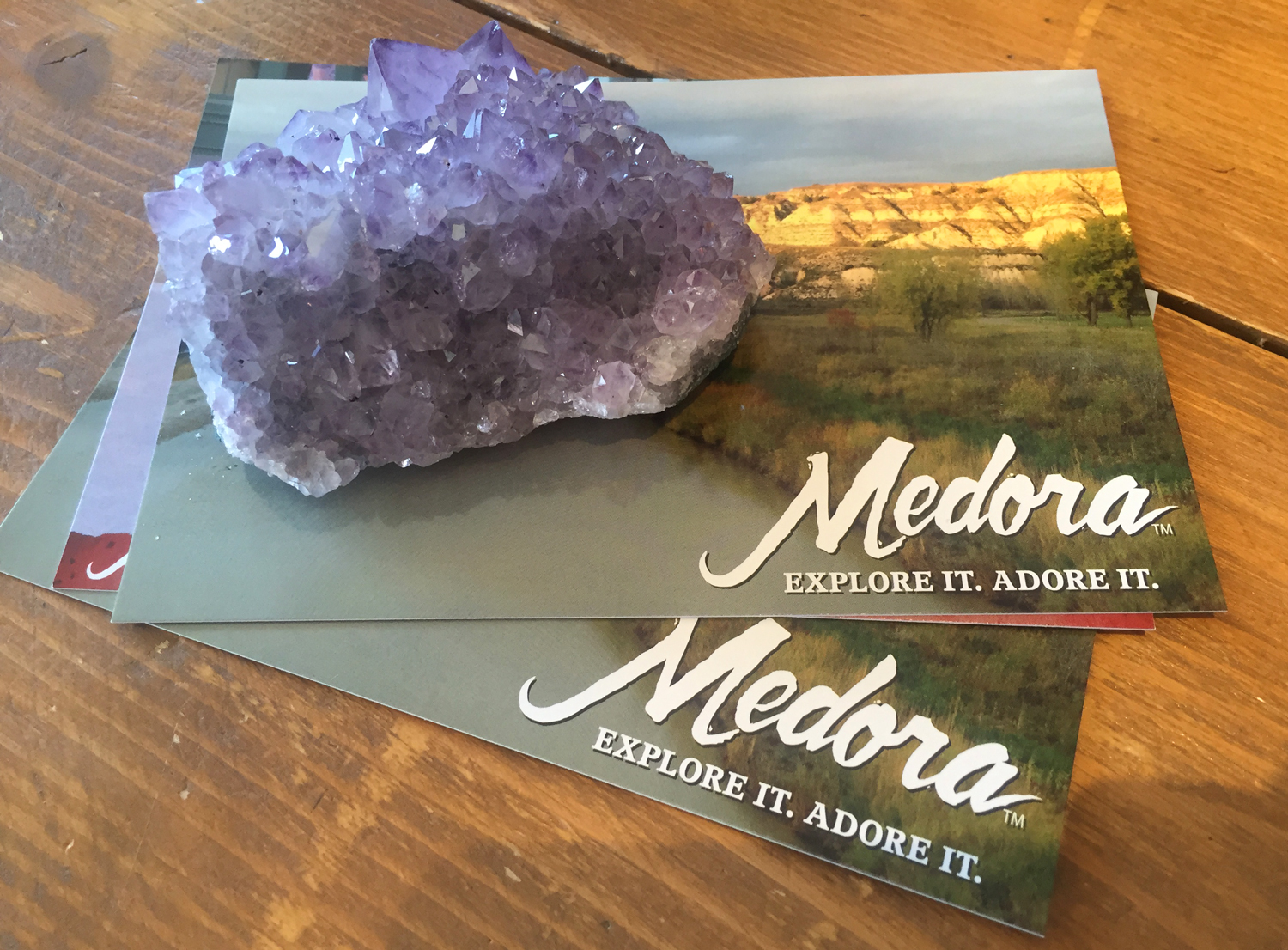 Medora_Postcards_By_Alicia_Underlee_Nelson
