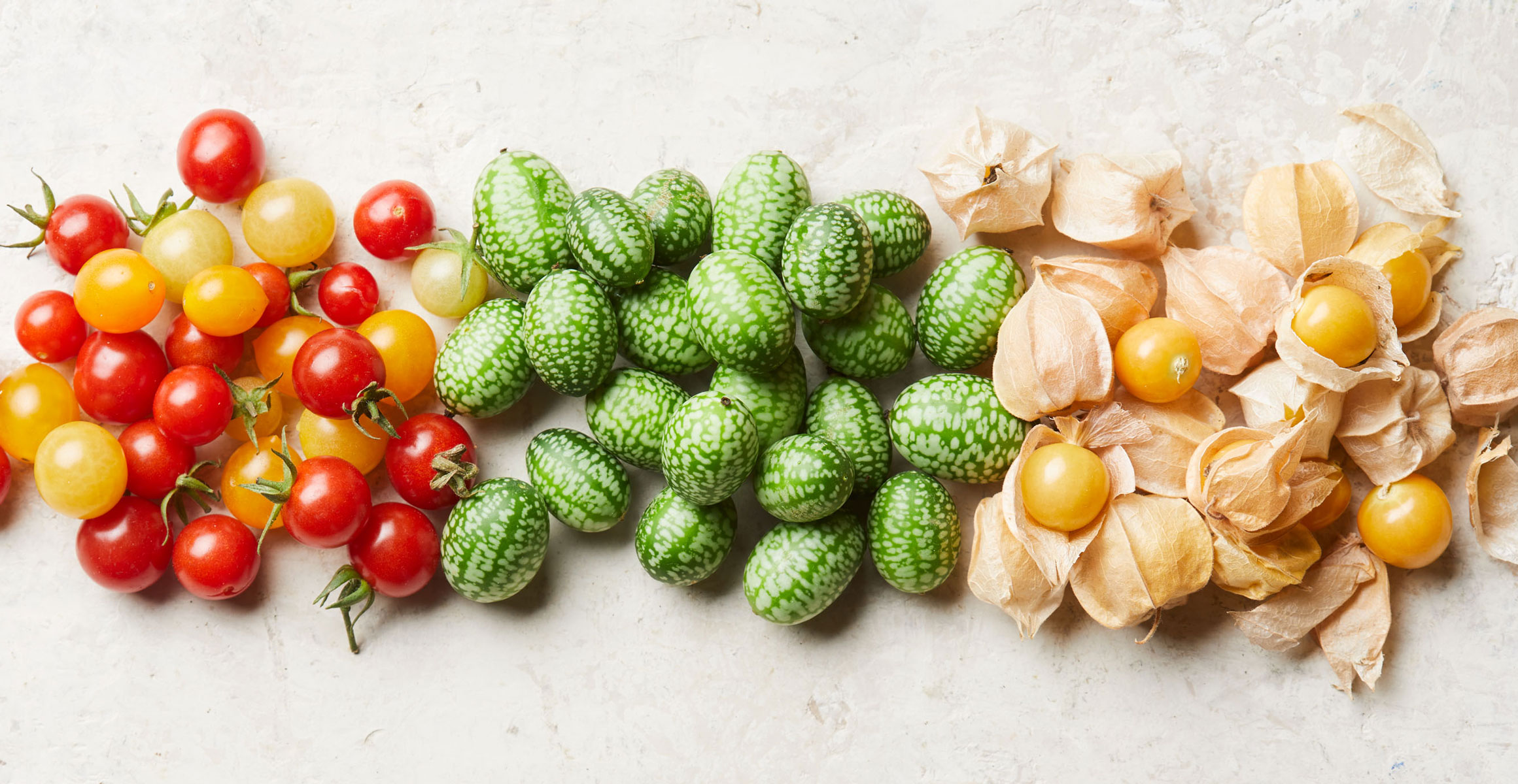 Tomatoes, cucamelons and ground cherries