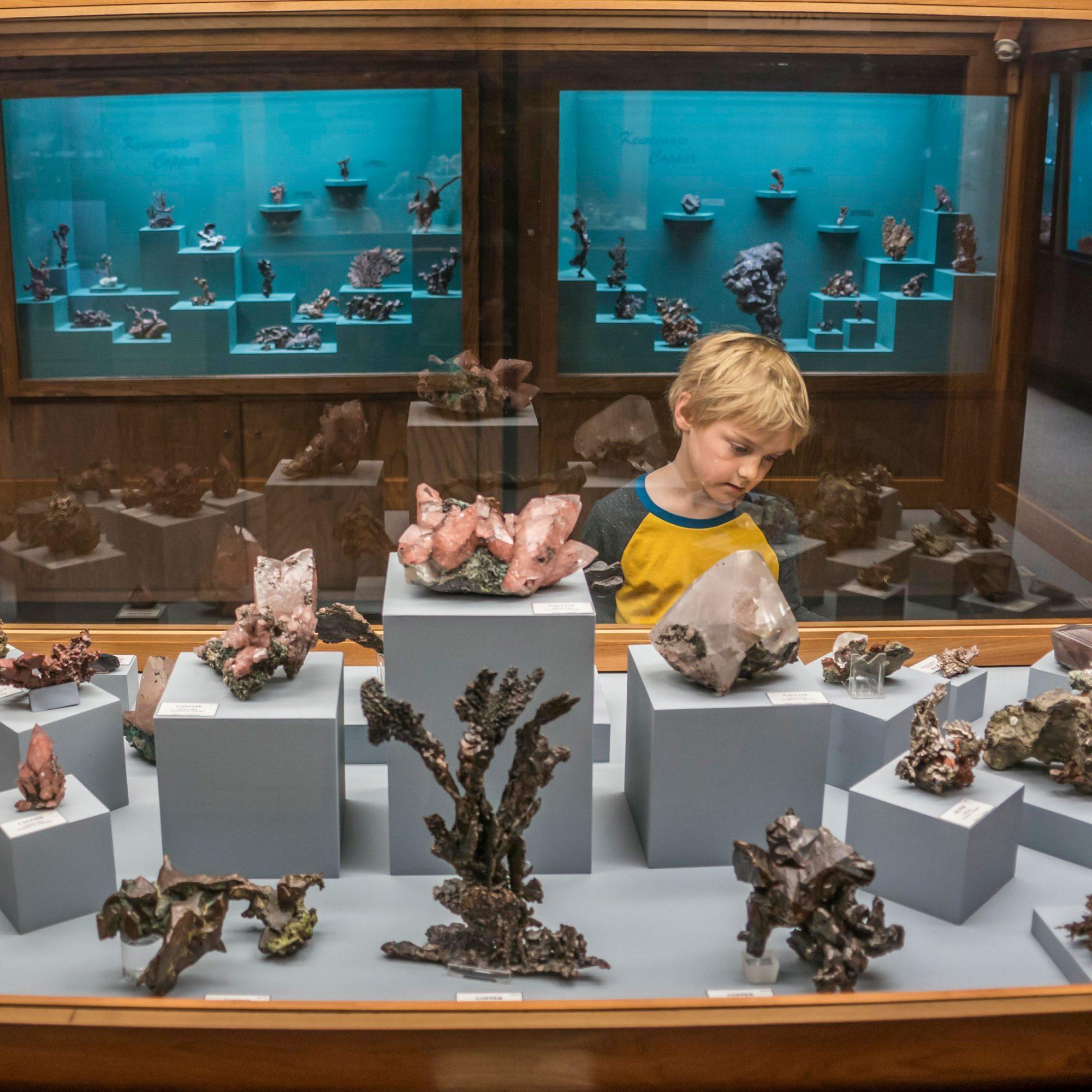 AE Seaman Mineral Museum