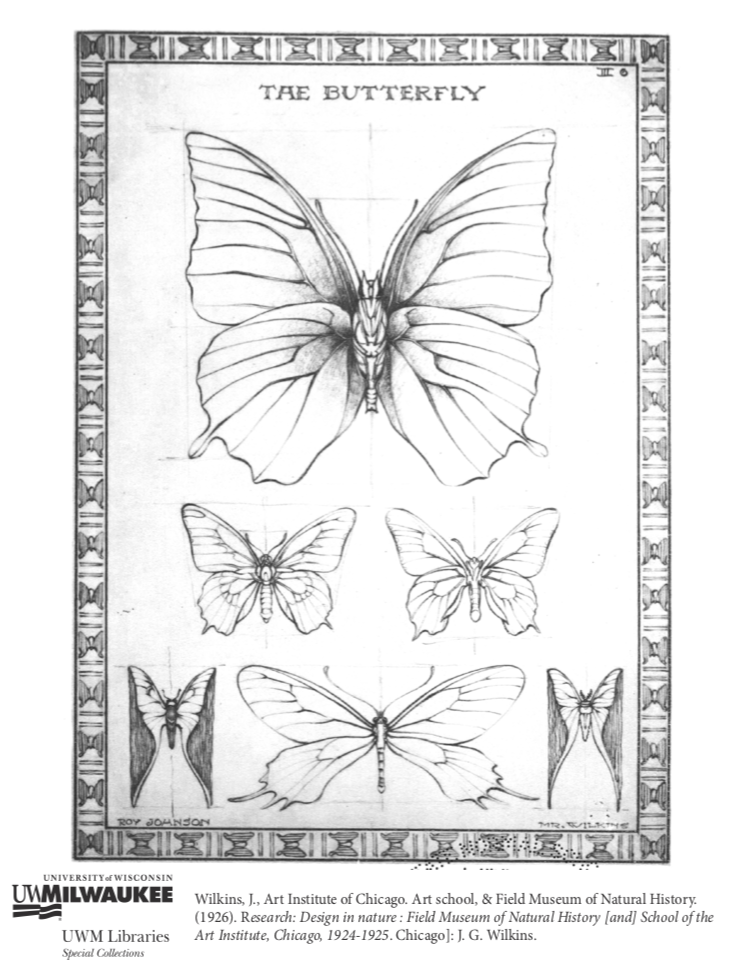 Butterfly Coloring Page UW Milwauke