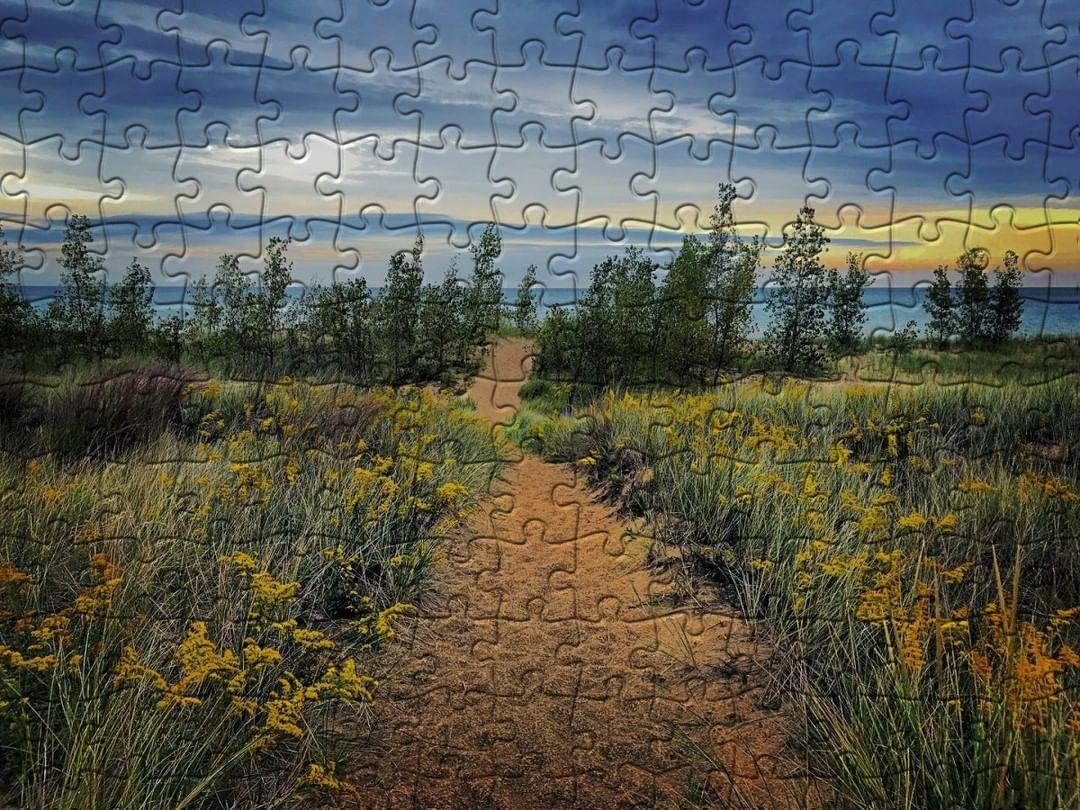 Indiana digital puzzle