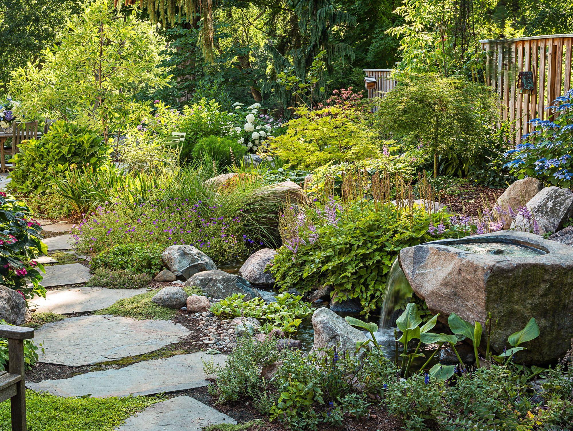 Woodland stream garden