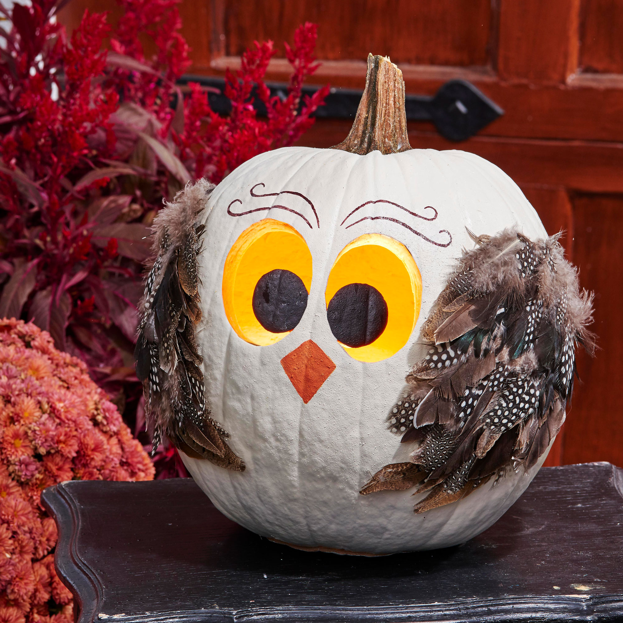 No-carve owl pumpkin