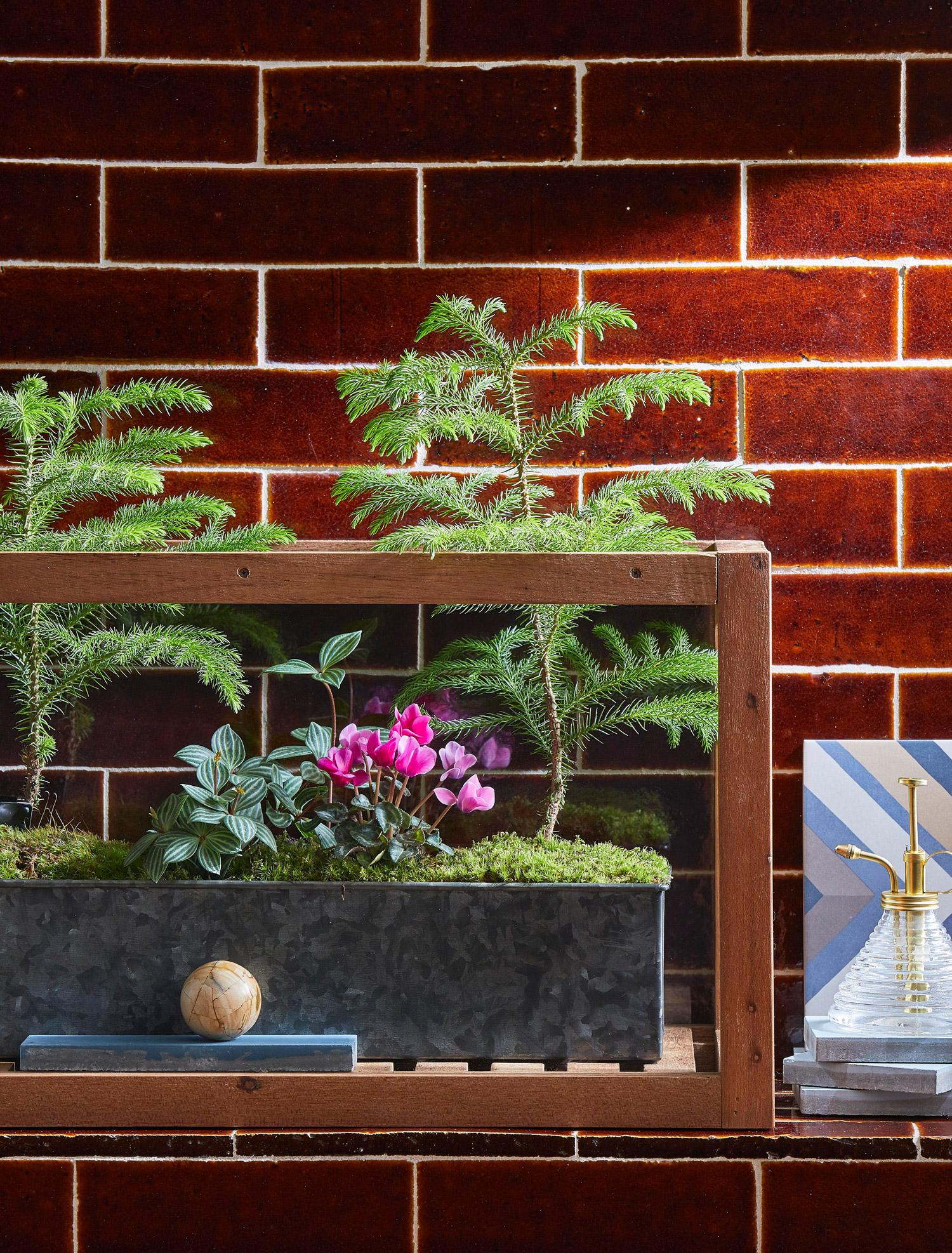 Plantscape Architecture