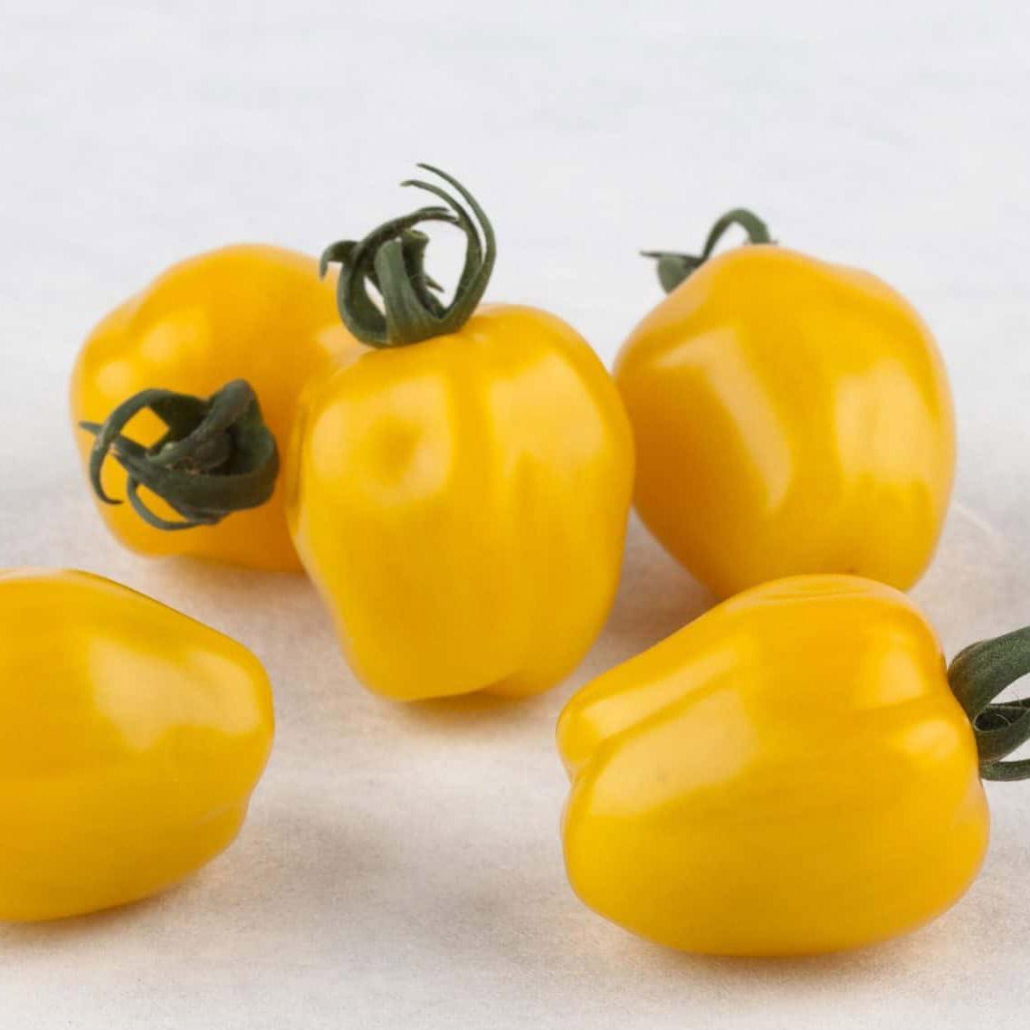 'Apple Yellow' Tomatoes