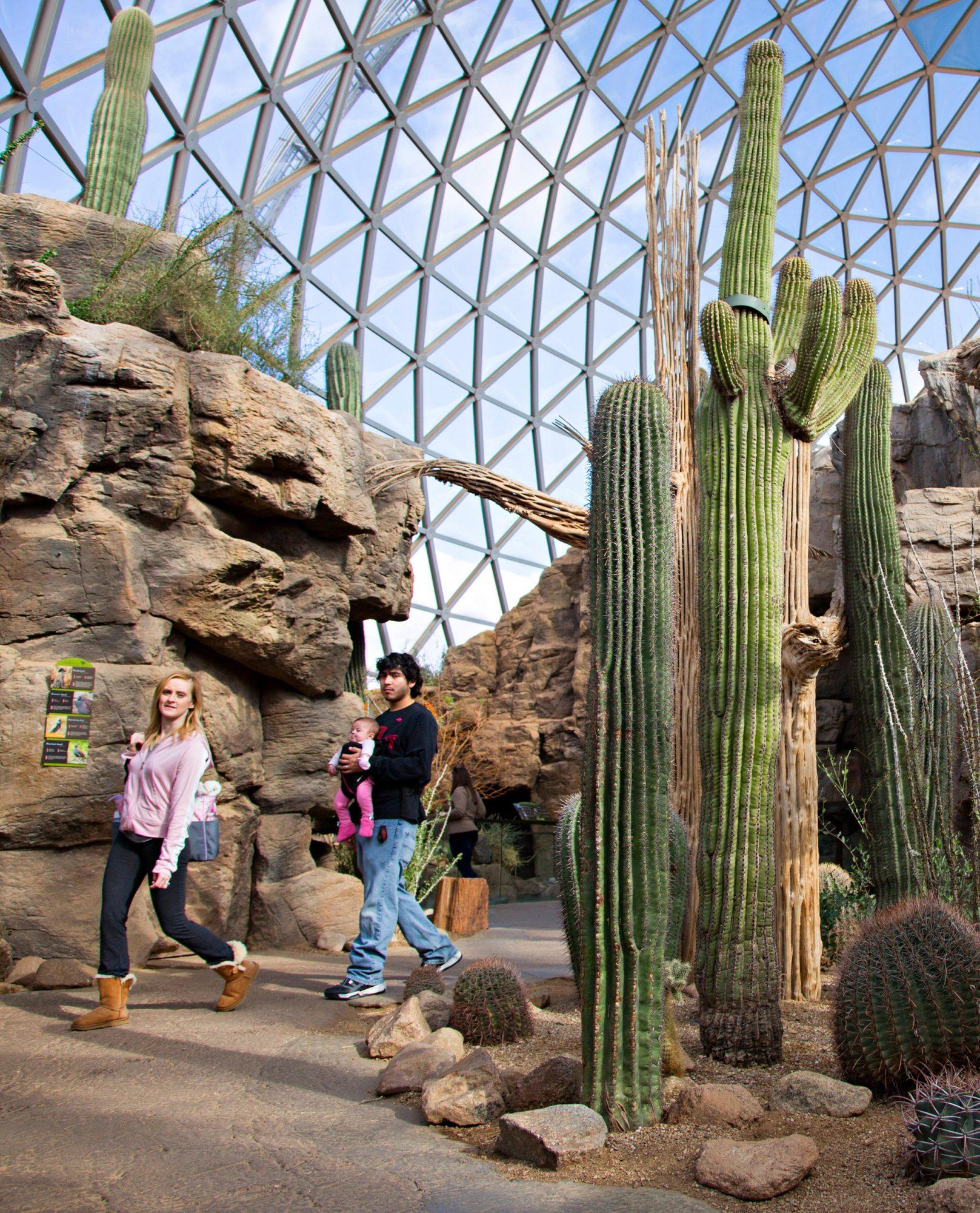 Omaha's Henry Doorly Zoo and Aquarium Desert Dome