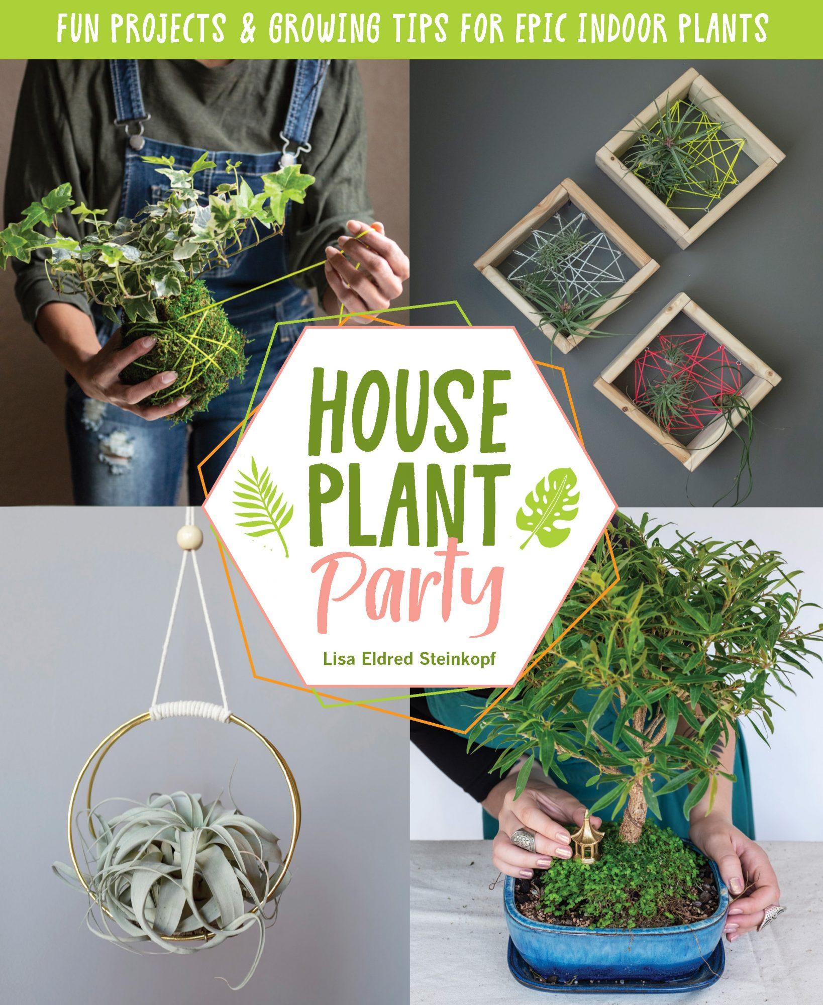 How to propagate houseplants