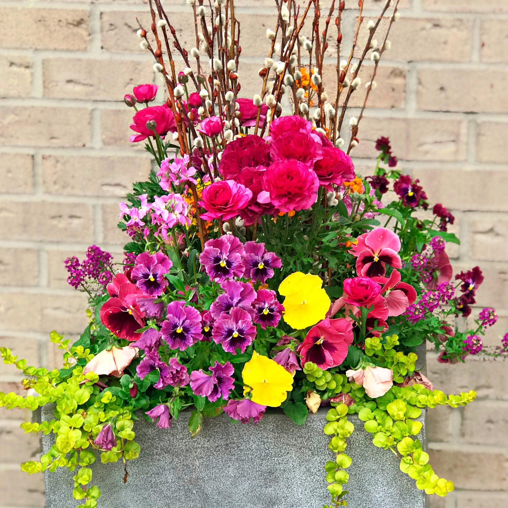 Window Bow Gardener Indianapolis