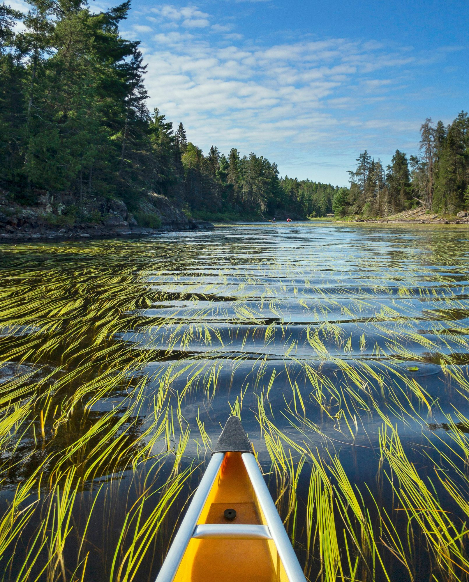 Endless Water: A Journey Into the Boundary Waters Canoe Area Wilderness
