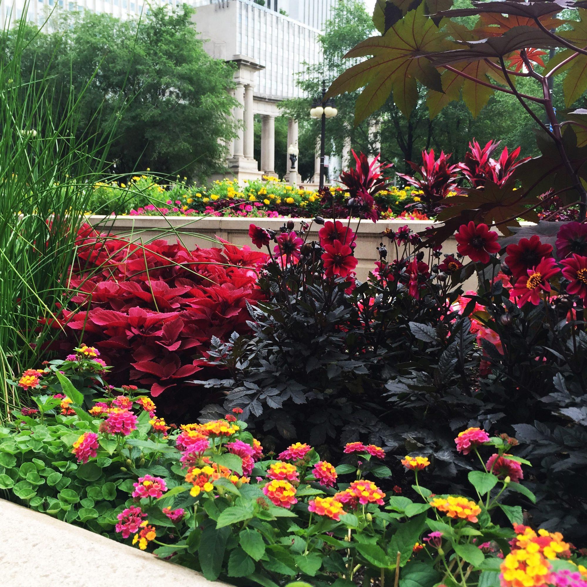 Michigan Avenue summer floral displays Chicago