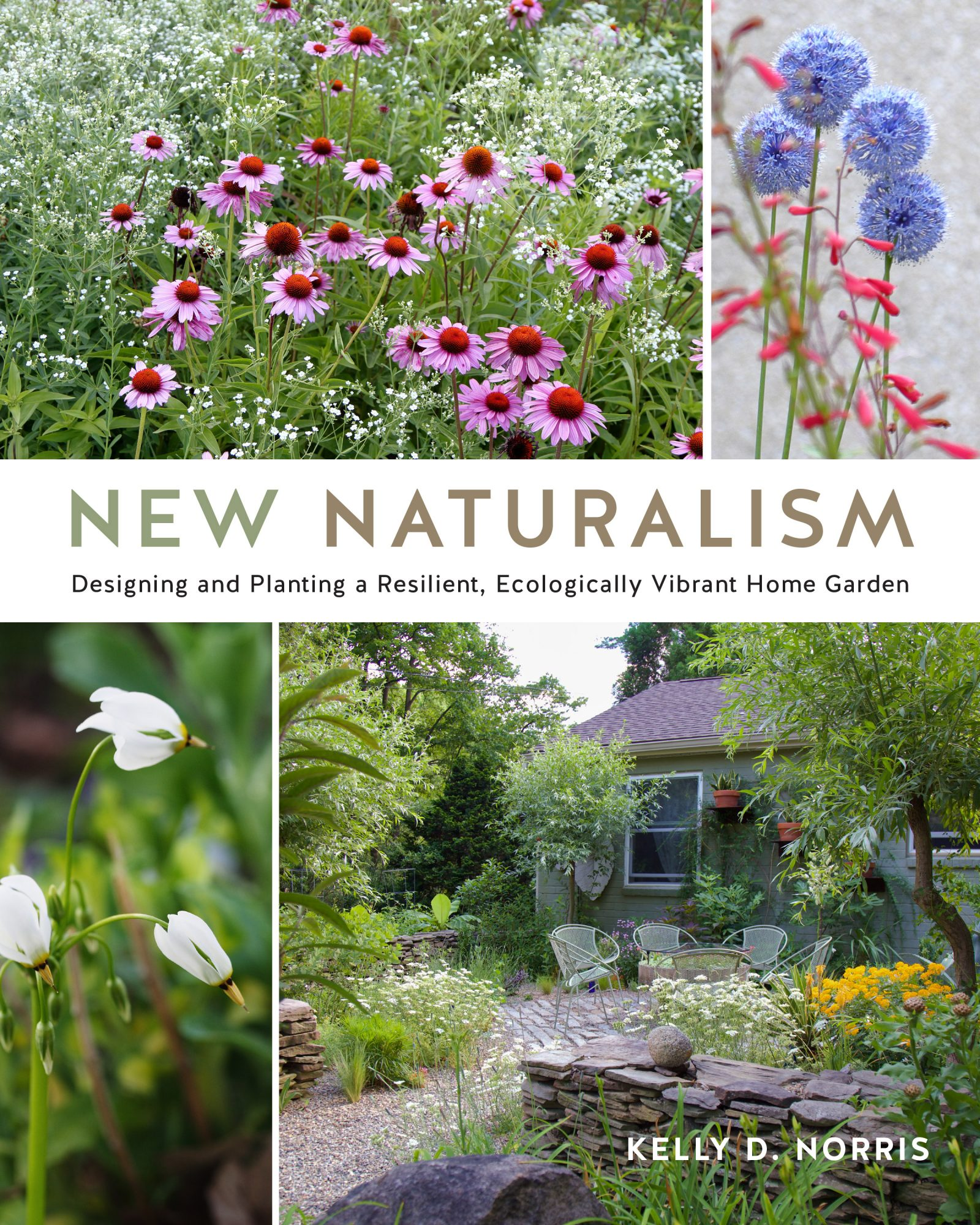 The New Naturalism book