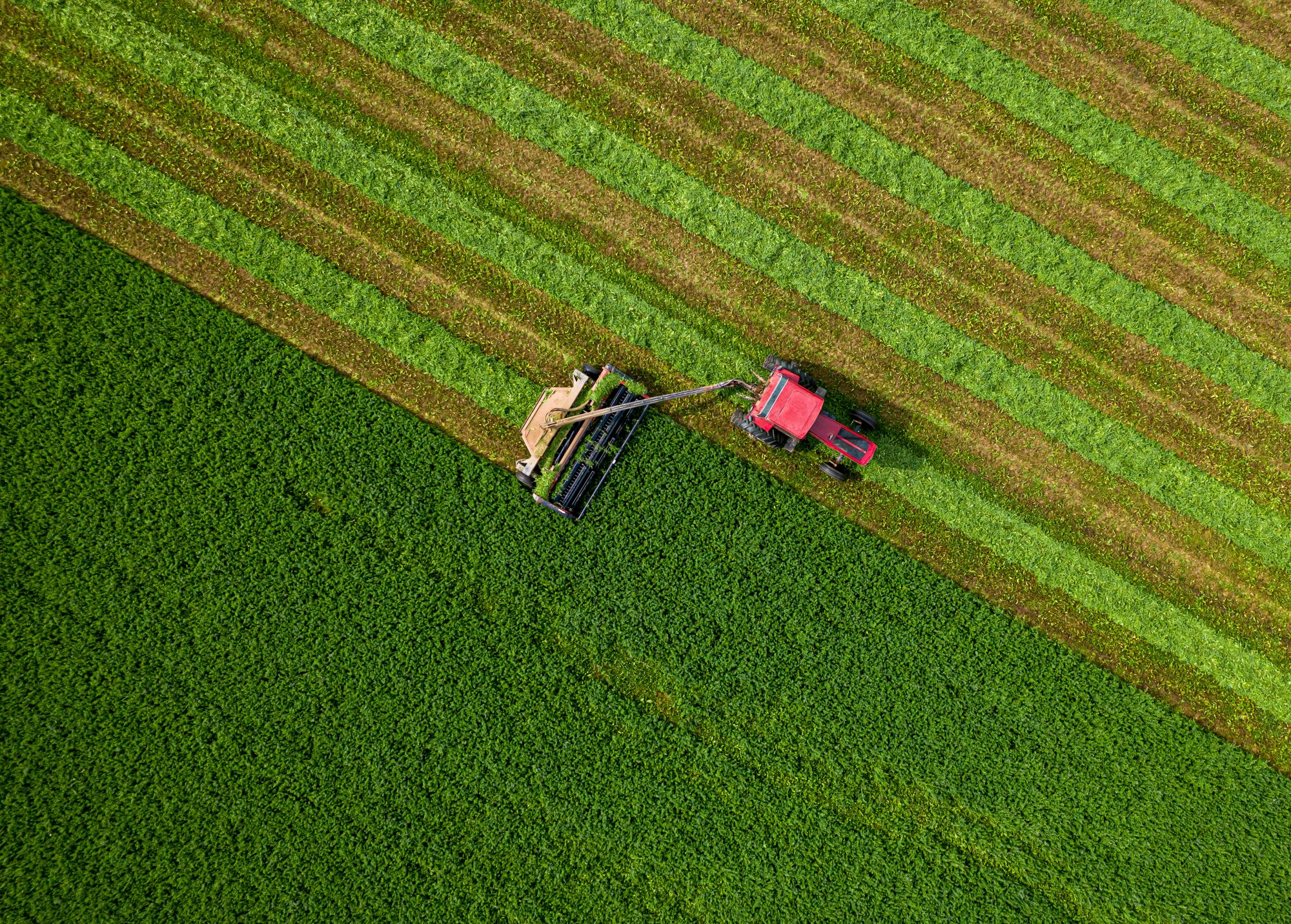 modern agriculture in Wisconsin