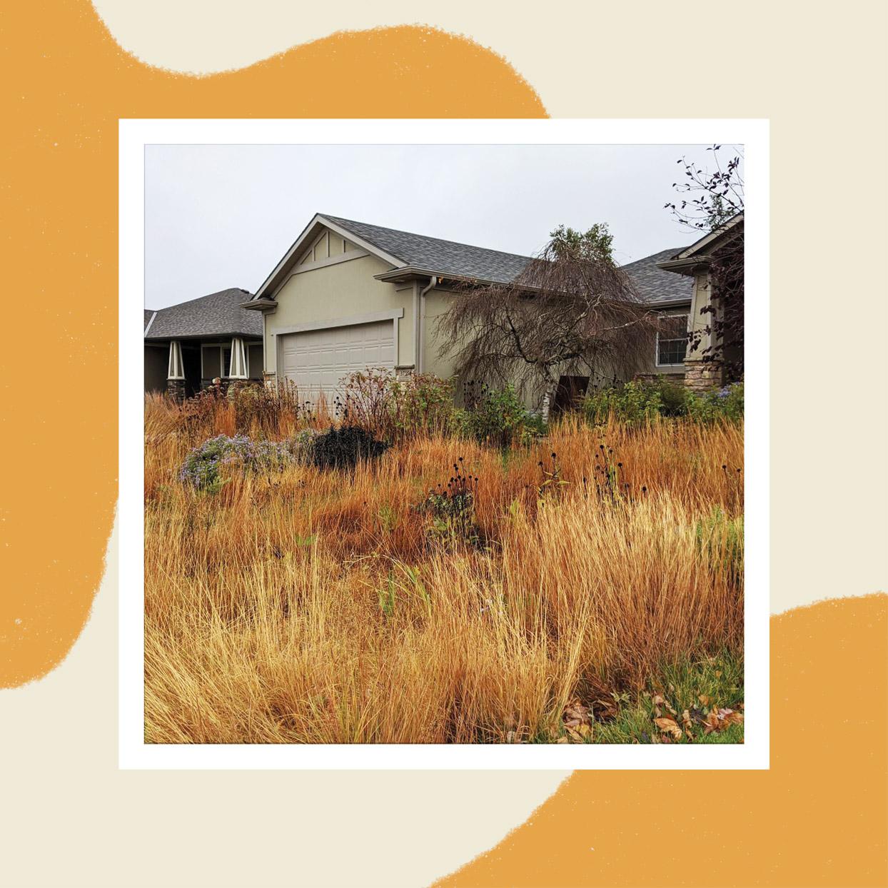 Prairie Garden October