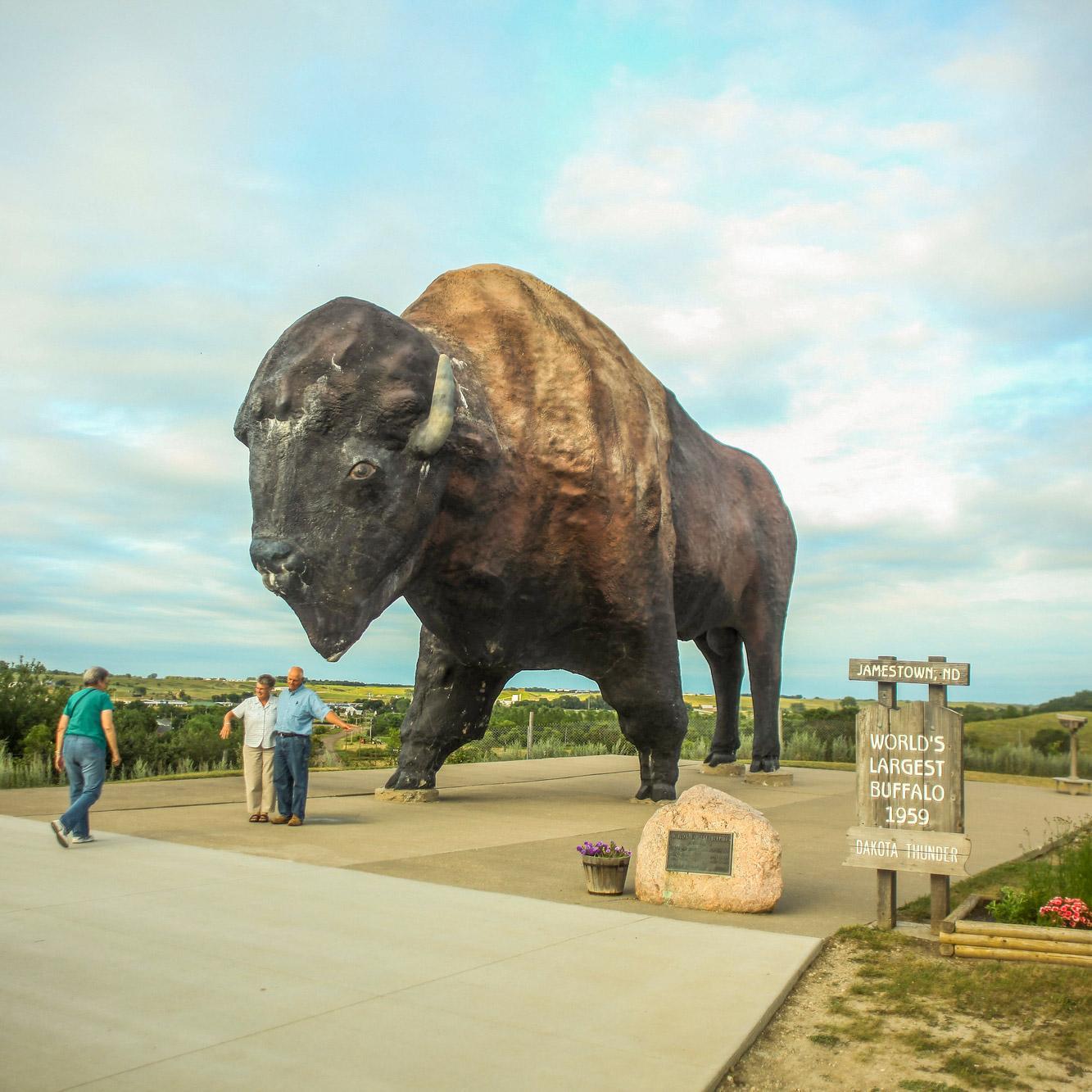 World's Largest Buffalo