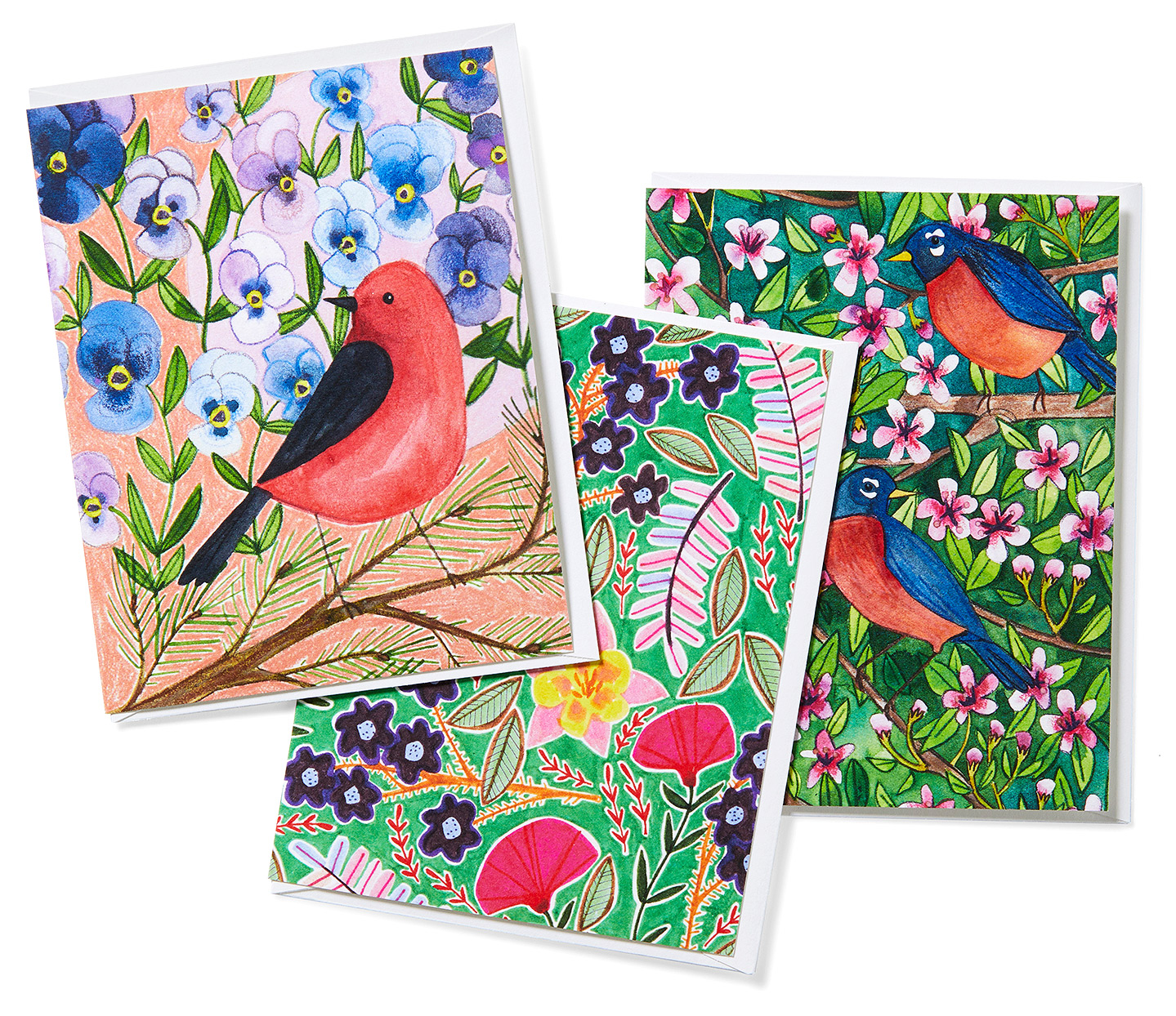 colorful illustrated floral note cards birds