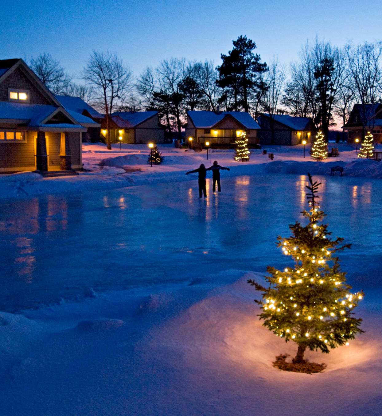 lit christmas trees near frozen pond