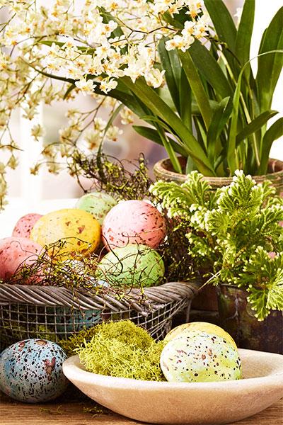 eggs for dye.jpg