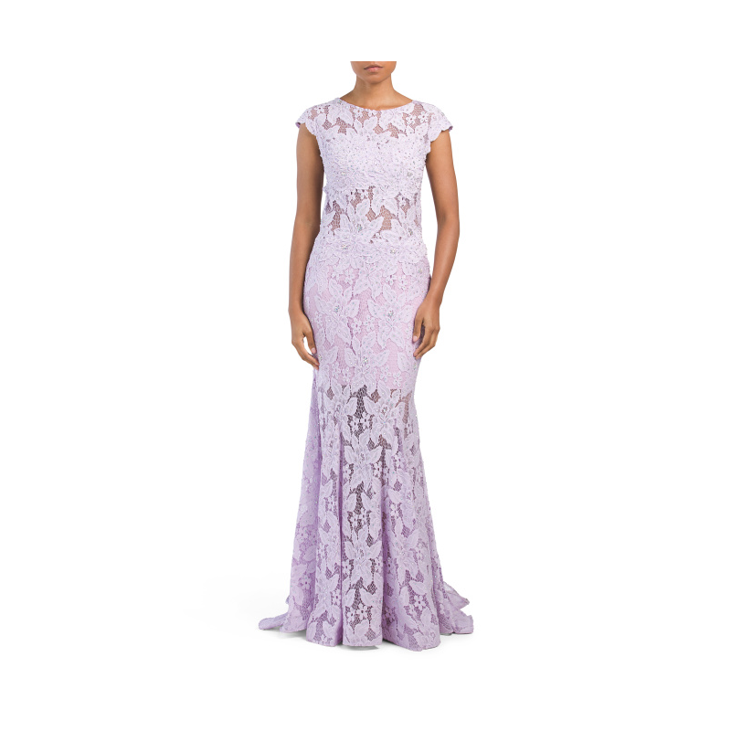 TJ Maxx Sheer Illusion Lace Gown